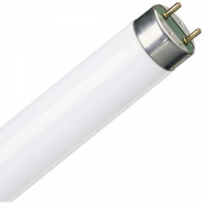 Люминесцентная лампа DeLux T8 18W/33 G13 10007832